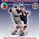 1-ВИ ADVANCED TAEKWON-DO INTERNATIONAL СЕМИНАР В БЪЛГАРИЯ