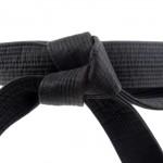 Теория за черни колани по Адвансед Таекуон-до